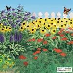 Pre Planned Perennial Sun Garden