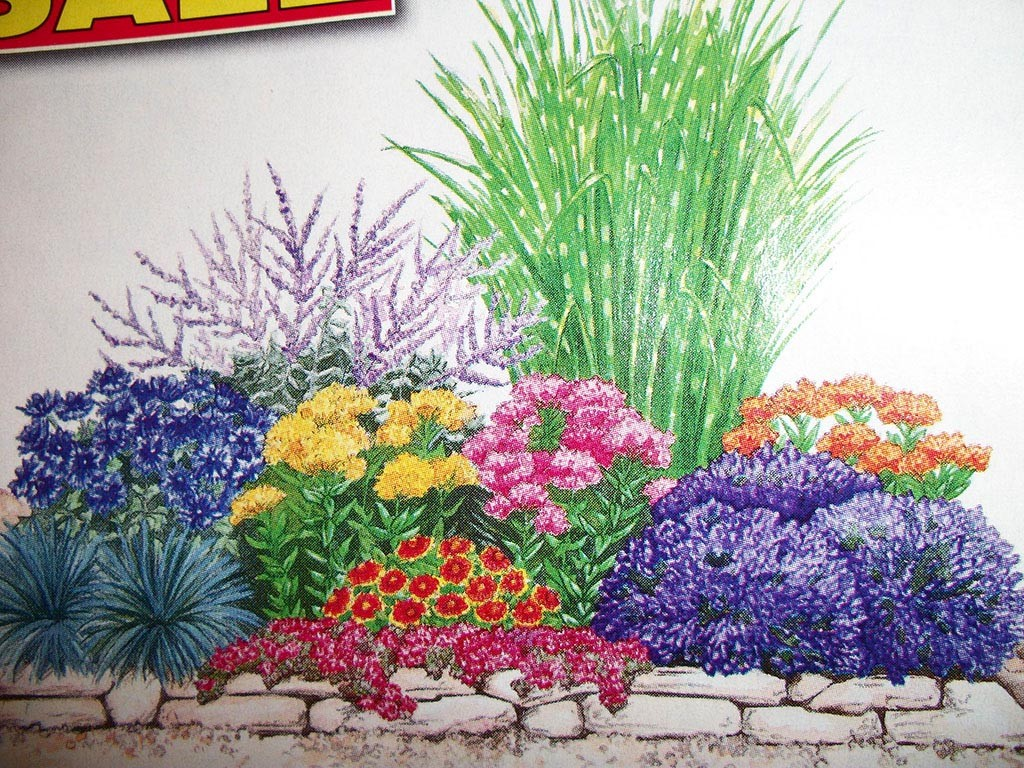 Pre Planned Shade Perennial Garden