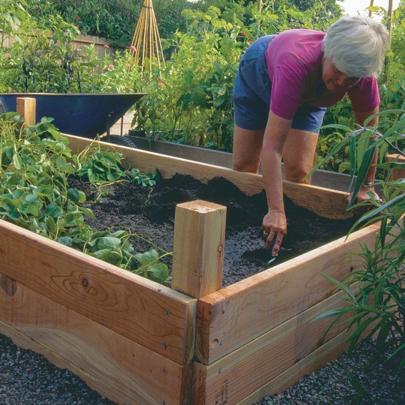 Raise Bed Garden Plans Vegetable