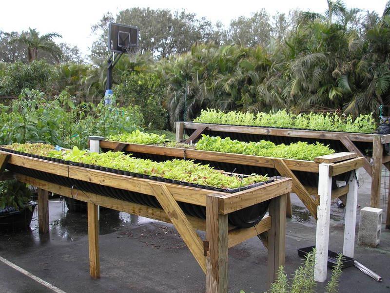 Raised Bed Herb Garden Design Plans