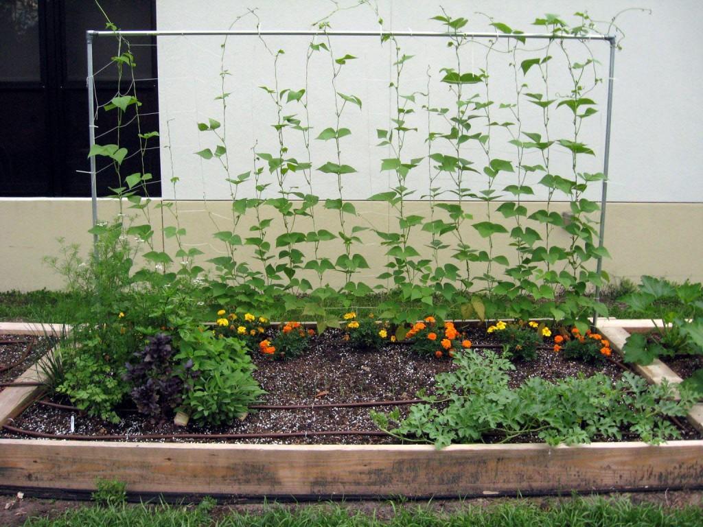 Raised Bed Herb Garden Plans