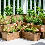 Raised Herb Garden Plans