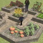 Raised Vegetable Garden Layout Plans