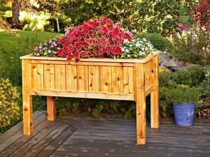 Raised Wooden Planter Boxes