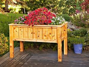 Raised Wooden Planter Boxes