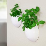 Self Watering Herb Garden Planter