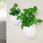 Self Watering Herb Garden Planter
