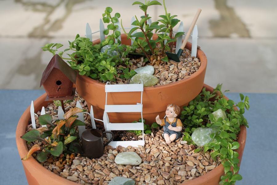 Shade Plants for Fairy Gardens