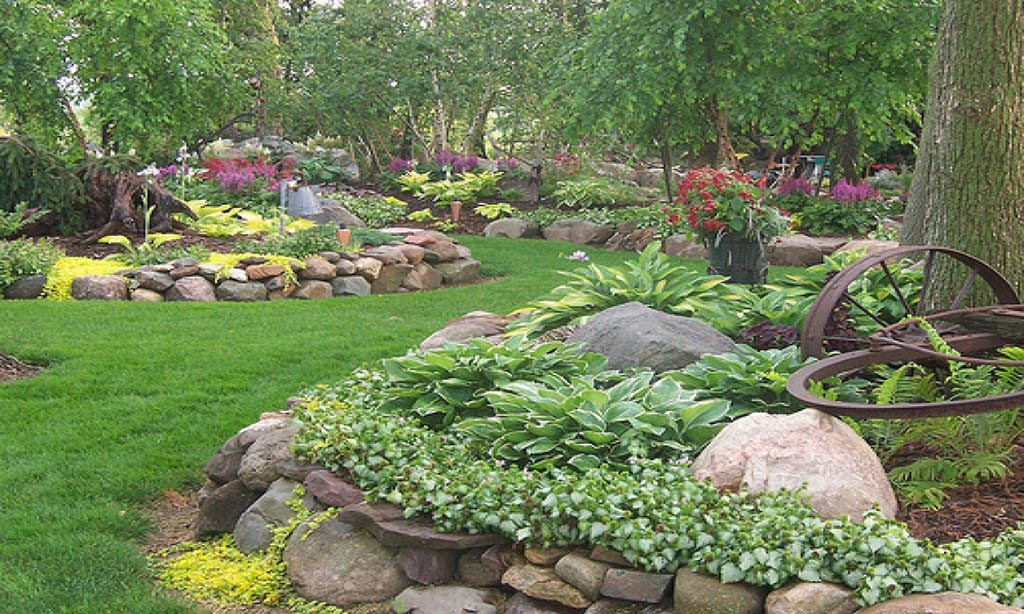 Shade Plants for Rock Garden