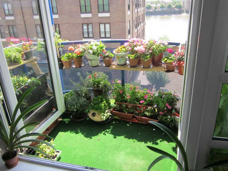 Small Apartment Herb Garden