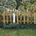 Small Border Fence Garden