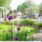 Small Garden Picket Fence Ideas
