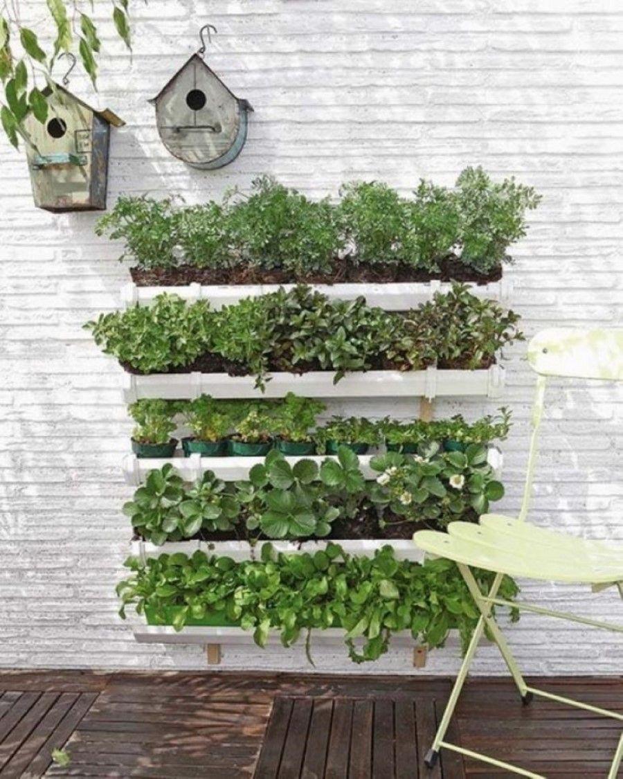Small Herb Garden Design Ideas