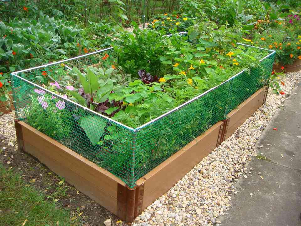 Small Herb Garden Kit