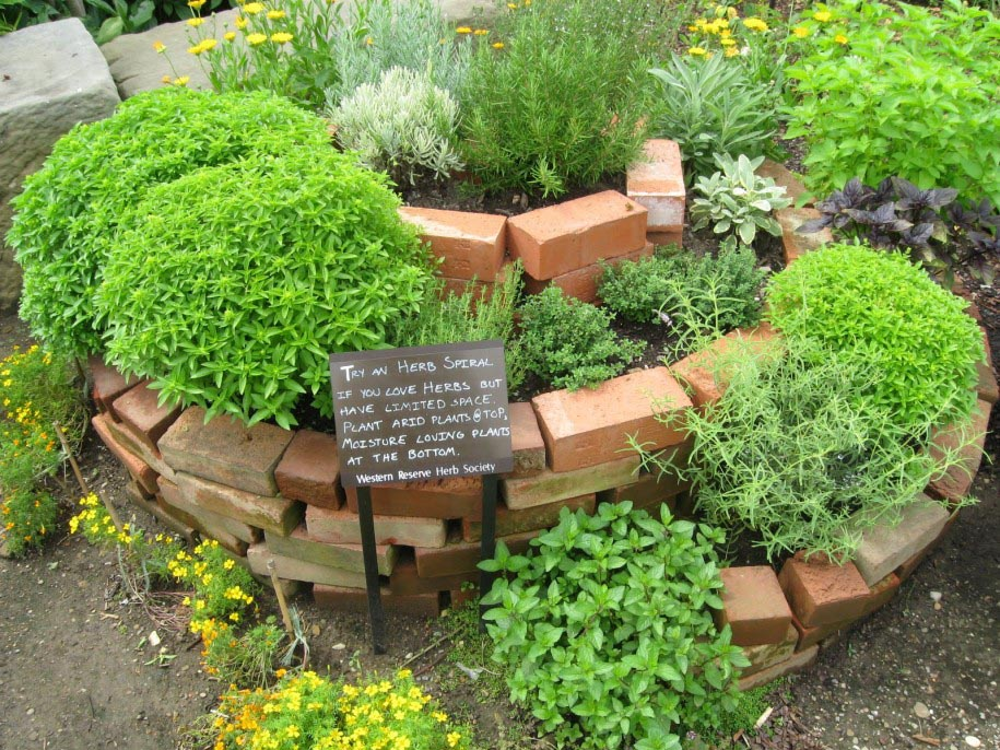 Small Herb Garden Plan