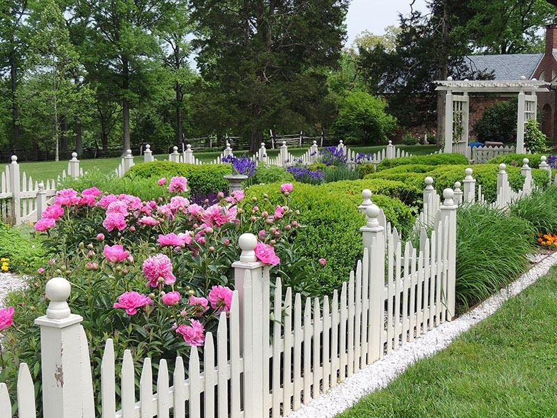 Small Picket Fence for Garden