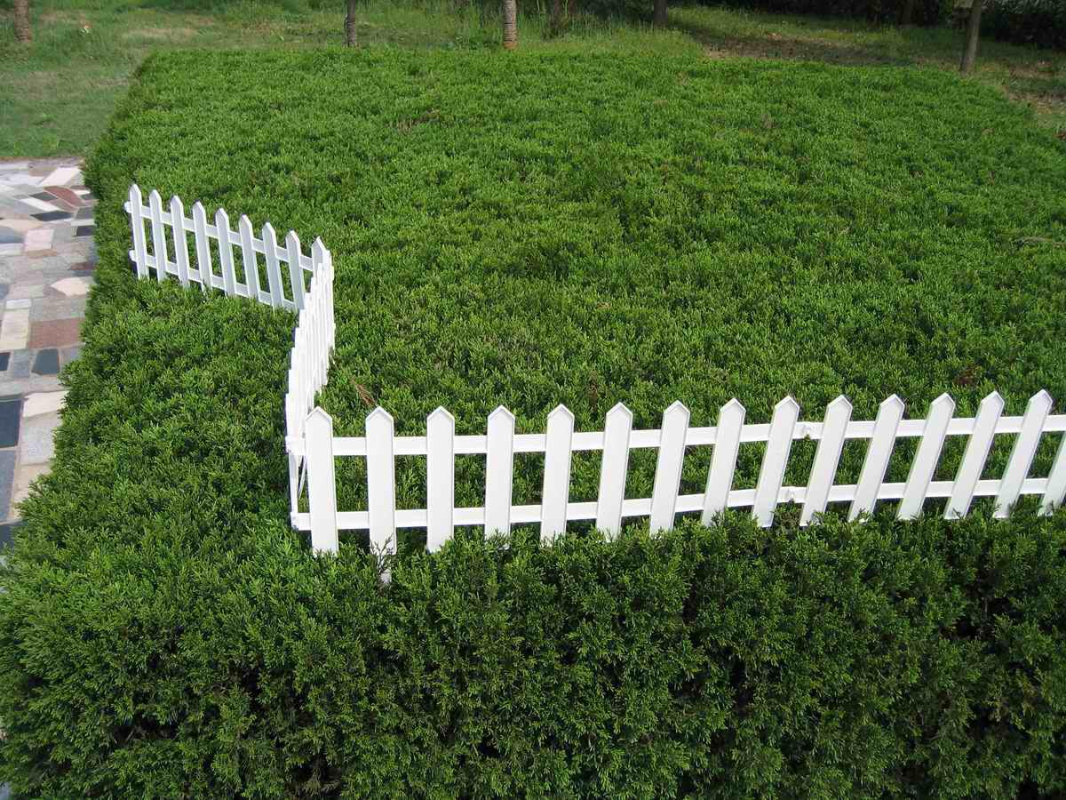 Small Plastic Garden Fence
