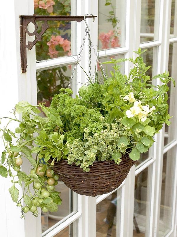 Small Space Herb Garden Ideas