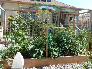 Small Space Vegetable Garden Plan