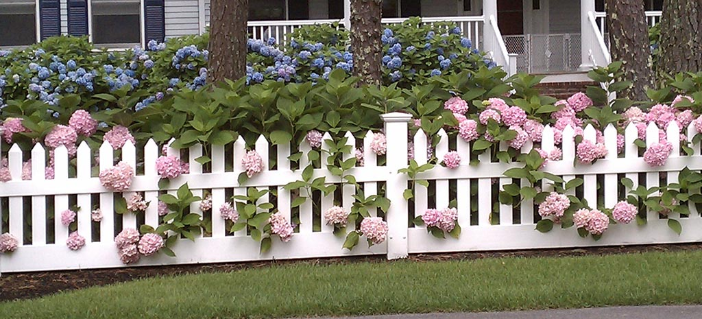 Small White Picket Fence for Garden