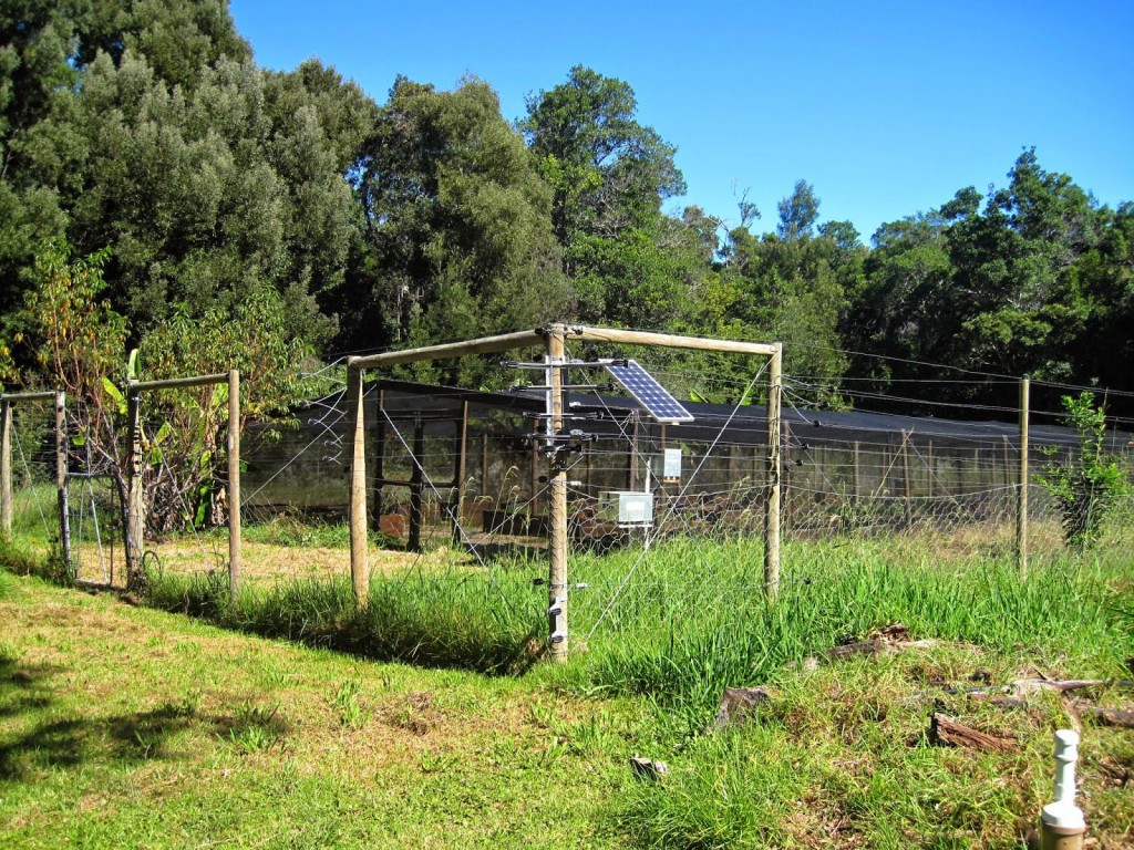 Solar Powered Electric Fence Kit for Garden