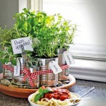 Starting a Potted Herb Garden