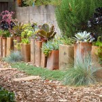 Succulent Container Garden Plans