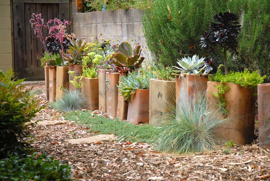 Succulent Container Garden Plans Garden Design Ideas