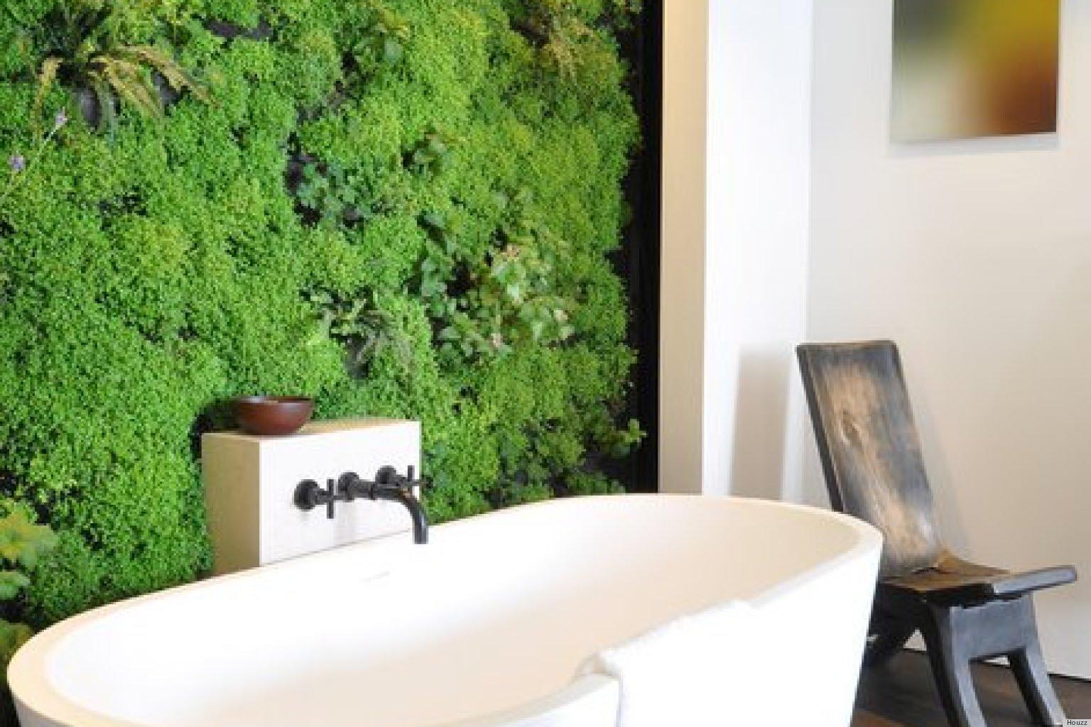 succulent wall garden indoor garden design ideas