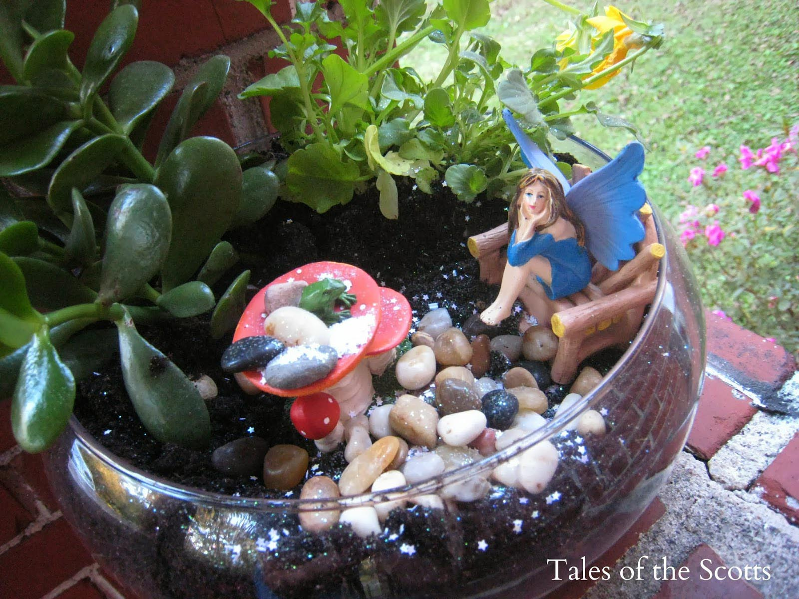 Terrarium Fairy Garden Kit