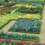 Vegetable and Flower Garden Plans