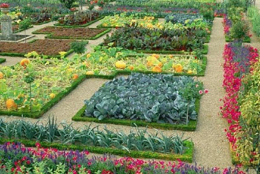 Vegetable and Flower Garden Plans