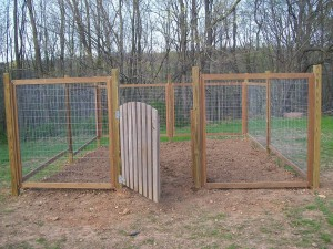 Vegetable Garden Fence DIY