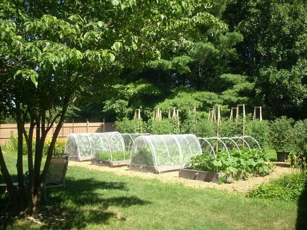Vegetable Garden Fence DIY