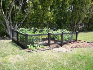 Vegetable Garden Fencing Kits