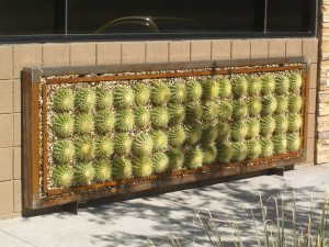 Vertical Garden Succulent Wall Panels