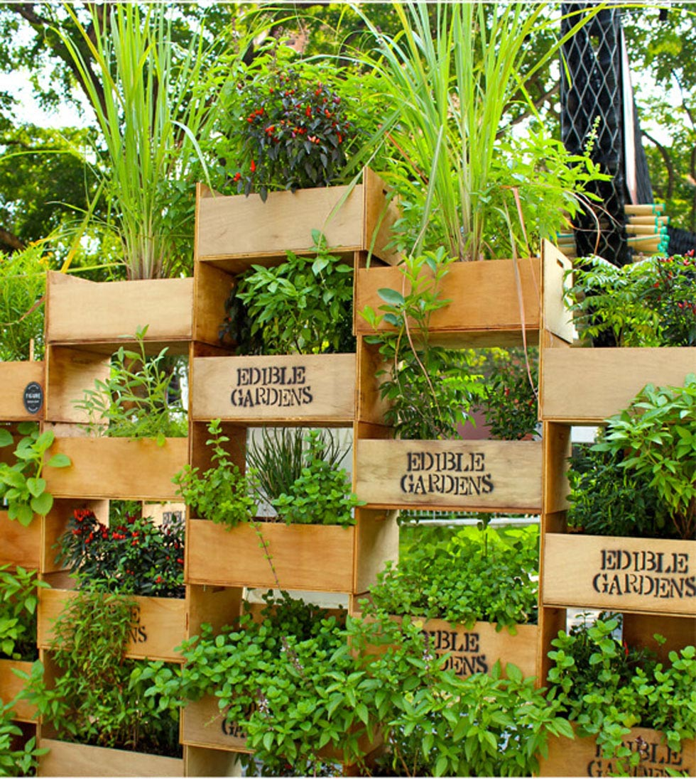 Vertical Garden Vegetables Herbs