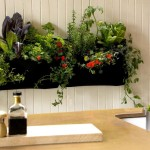 Vertical Herb Garden in Kitchen