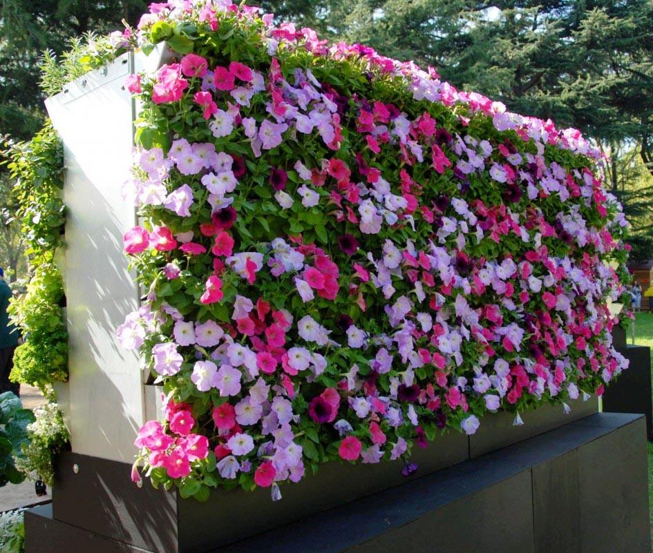 Vertical Succulent Garden DIY Panel