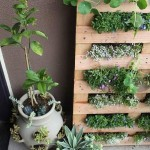 Wall Herb Garden DIY