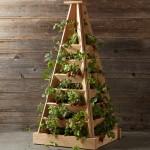 Williams Sonoma Vertical Herb Garden