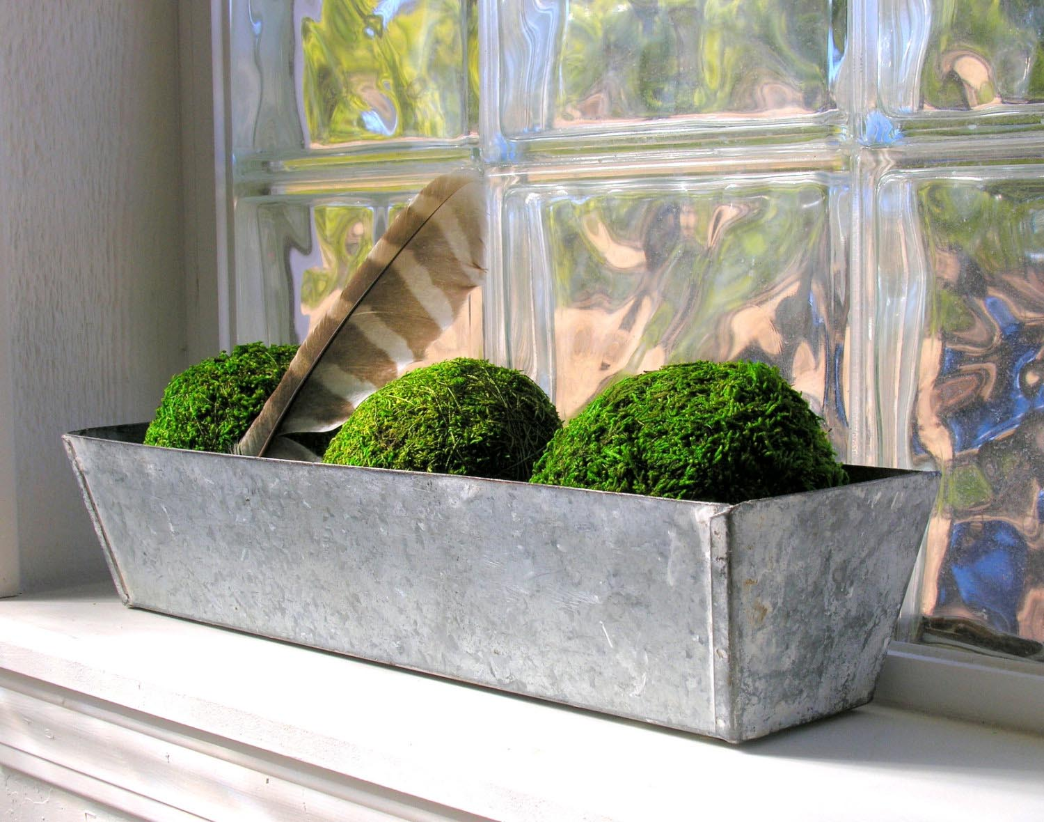 Window Box Herb Garden Indoor