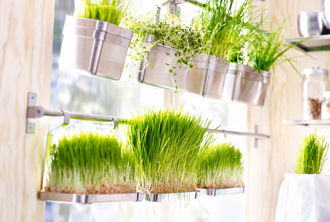Window Herb Garden Ikea