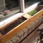 Window Sill Herb Garden Box