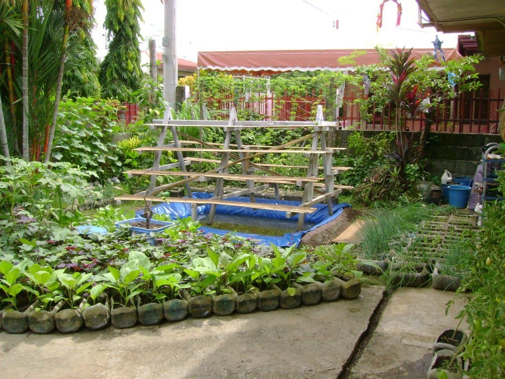 Balcony Vegetable Garden Design