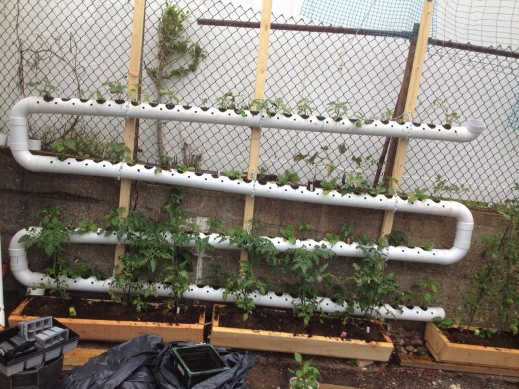 Balcony Vegetable Garden Kit
