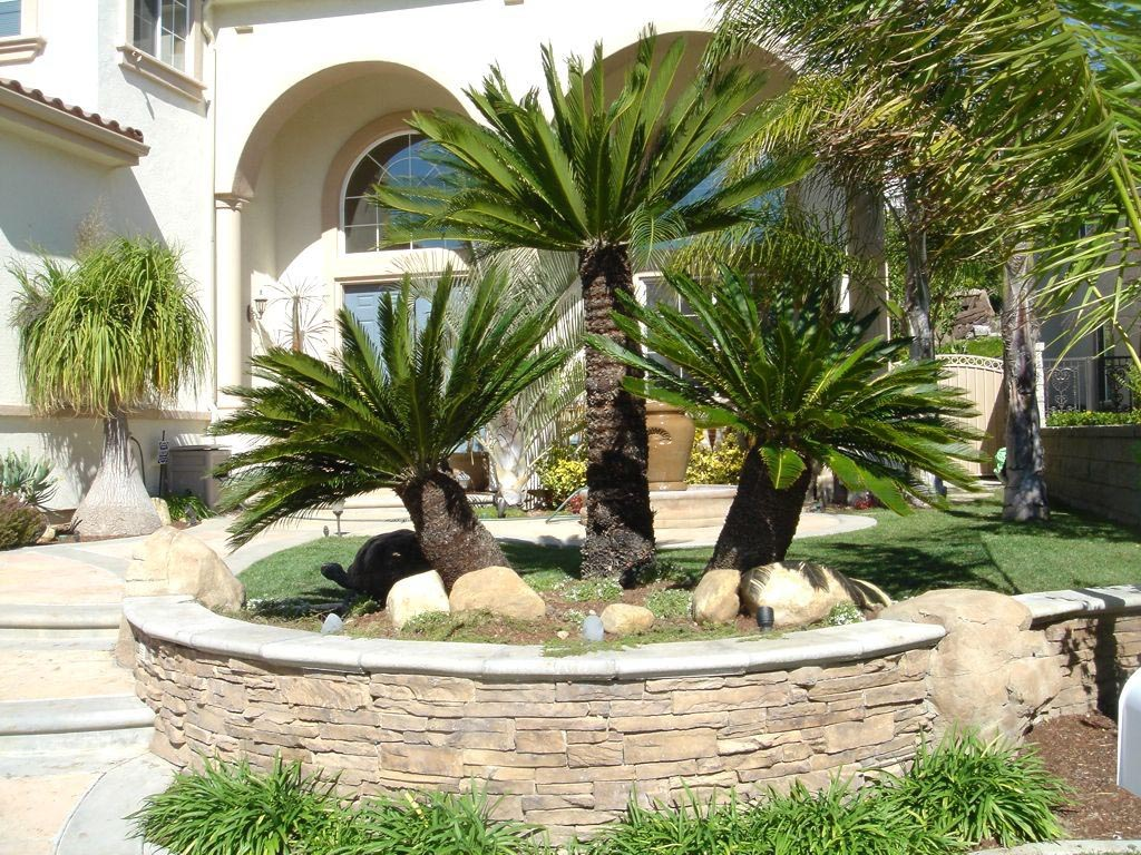 Best Landscaping Ideas for Small Yards