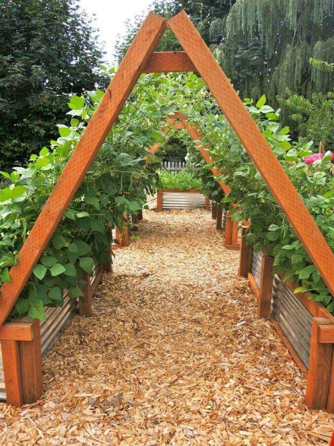 Best Material for Raised Vegetable Garden