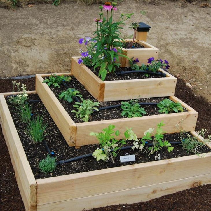 Best Small Vegetable Garden Ideas