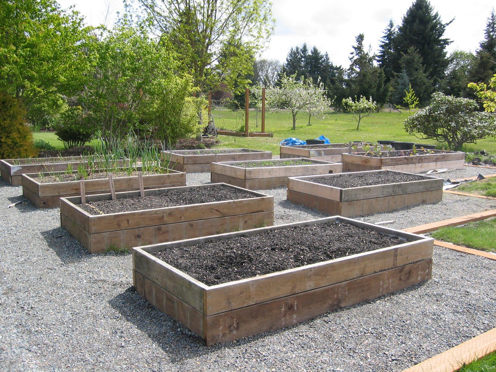 A Raised Vegetable Garden in Your Homestead Garden Design Ideas